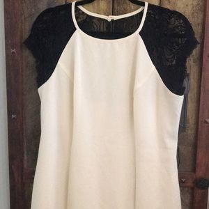 Bisou Bisou black and white lace cocktail dress